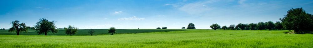 草原と空の画像